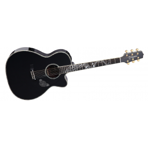 Takamine LTD-2017 Acoustic Guitar (LTD-2017)